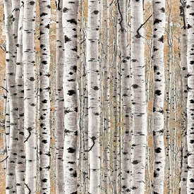 Quilting Treasures Timberland Trail Birch Trees Tan 26808-A